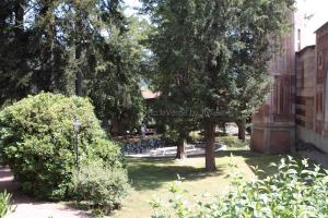 Parco Neogotico