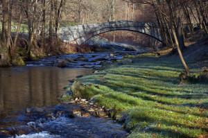 quadrifoglio-azzurro-5-l'Agogna-al-ponte-romano
