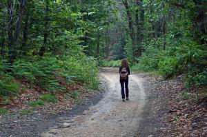 quadrifoglio-indaco-11-in-cammino-sulle-piste-forestali