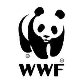 14/09/2017 | Giornata di formazione naturalistica ad Ameno – Educazione ambientale passeggiando lungo il percorso didattico WWF
