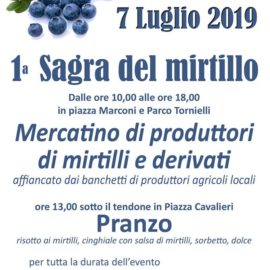 7/07/2019 | Prima Sagra del Mirtillo ad Ameno