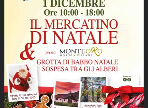 1/12/2019 | Mercatino e Grotta di Babbo Natale ad Ameno